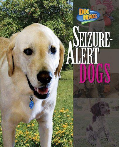 seizure dogs 17 best ideas about epilepsy on seizures epilepsy awareness and epilepsy