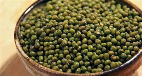 come cucinare soia verde soia tutto quello c 232 da sapere sul legume viene