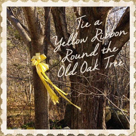how to tie ribbon on a tree at the end of the day tie a yellow ribbon the