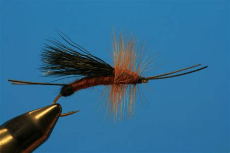 fly magic in your books product dryfly innovations