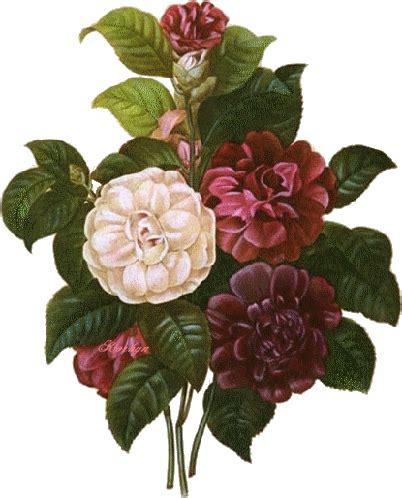 imagenes rosas variadas 174 colecci 243 n de gifs 174 im 193 genes de flores variadas en dibujos