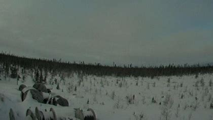 fort severn airport, canada webcams