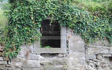 i giardini bergamo alla scoperta dei giardini segreti e incantati di bergamo