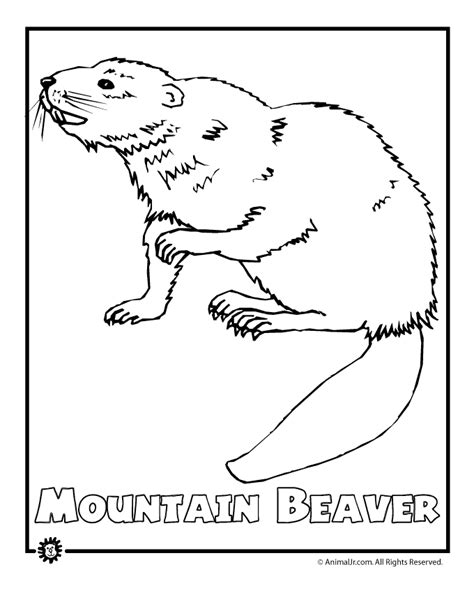 coloring pages endangered animals endangered animals coloring pages animals from