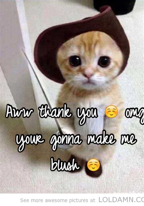 Aww Thank You Meme - aww thank you omg your gonna make me blush
