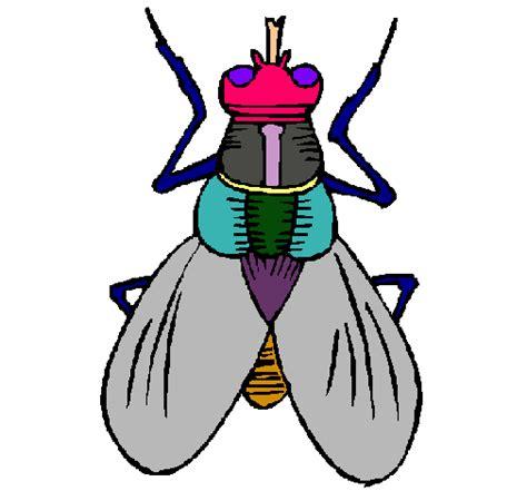 imagenes de niños jugando de 2 años dibujo de mosca pintado por 0cravio2 en dibujos net el d 237 a