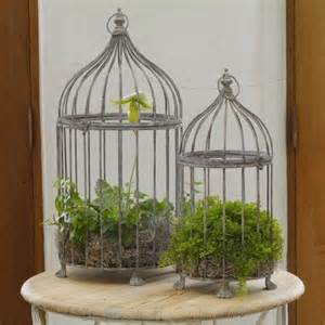 aged metal bird cages for decor decor ideas