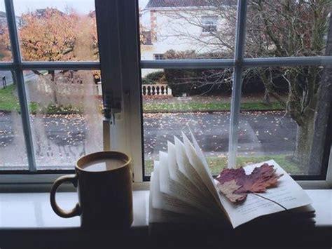 autmn autunno book cup rain window winter image
