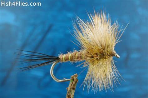 brown drake pattern standard brown drake fly flyfishing with fish4flies com