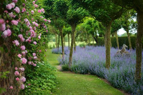piccoli giardini fioriti piccoli giardini fioriti piccoli giardini piante alberi e