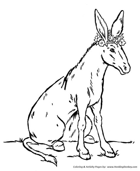 coloring pages of animals and flowers donkeys coloring pages coloring home