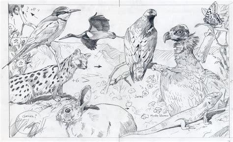 imagenes de ecosistemas faciles para dibujar 301 moved permanently