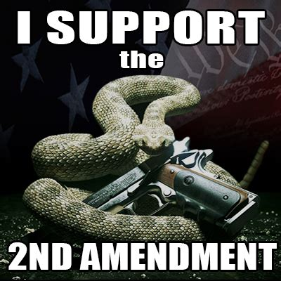 2nd Amendment Meme - gadsen snake gun memeselling the second amendment by gregory smith selling the second