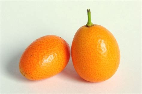 i had a small orange fruit this morning which tasted like