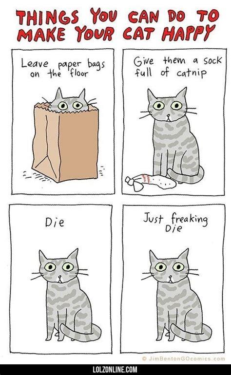 Sty Cat Papercraft - 1000 id 233 er om l 248 jer p 229 sjove uheld jokes