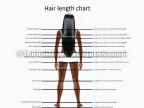 how much does black hair grow in a month hair length chart reposted
