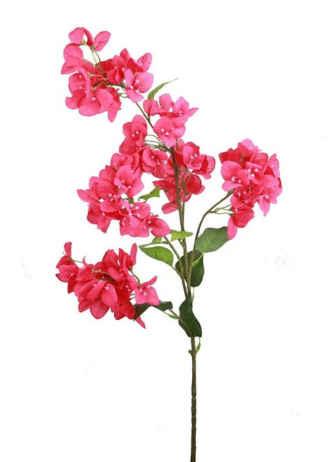 Tall Vases Wholesale Red Fuchsia Bougainvillea Spray Silk Flowers Afloral Com