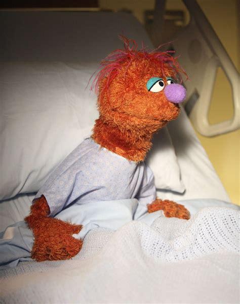 scrubs muppet wiki