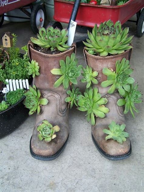 hens and planter hens and with boot planter neat things