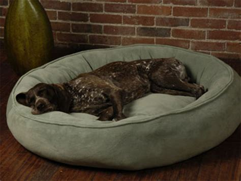 huge dog bed this nest bed from big shrimpy has got to be one of the