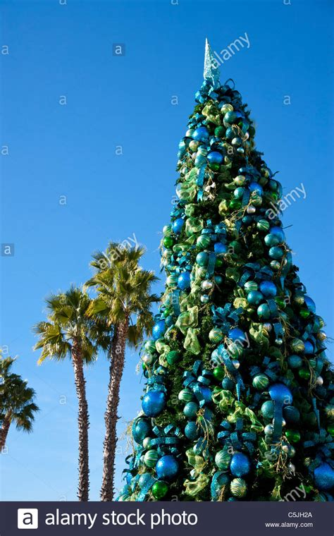 christmas trees at whole foods long beach tree with baubles at the pike california stock photo royalty free image