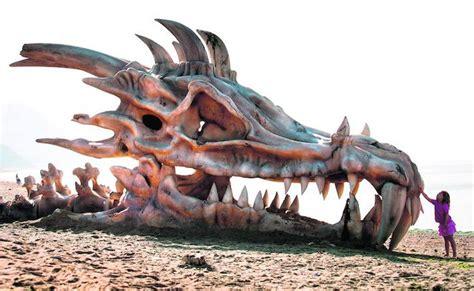 los dragones 191 de d 243 nde vienen los dragones el correo