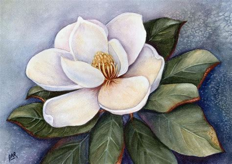 magnolia blossom iv painting by barbara ann robertson