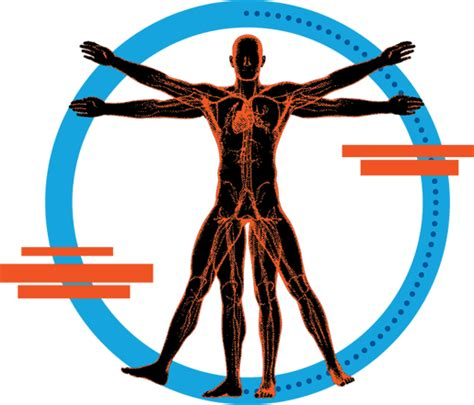 human bench mark degree programs college of health and human performance