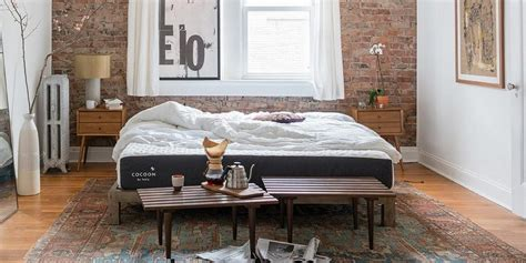 Cocoon Mattress by Sealy Cocoon Mattress Review
