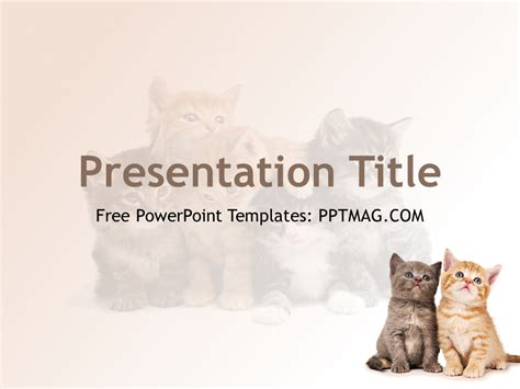 free cats powerpoint template pptmag