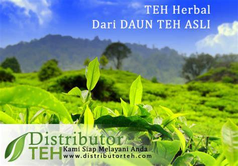 Teh Celup Rolas Tea jual teh hijau jual teh hitam jual teh putih jual