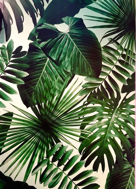 wallpaper leaf design flavor paper wild thing fabric and wallpaper pinterest
