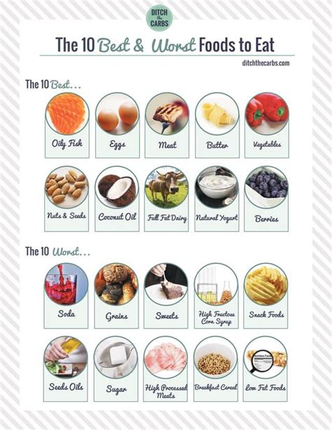 worst things to feed a 10 best foods to eat and the 10 worst to avoid let s get started