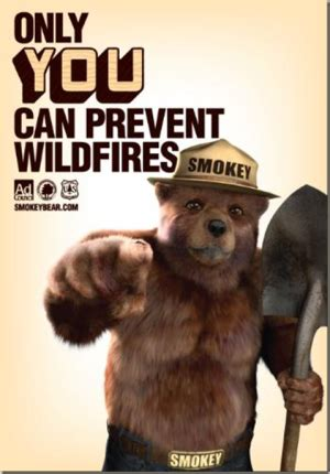 Only You Can Prevent Forest Fires Meme - what is a psa top hollywood acting coach kid s top