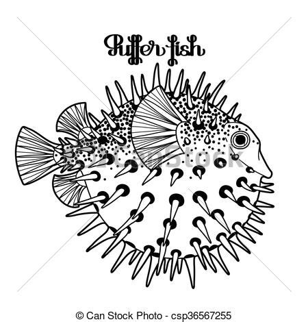 sea urchin coloring coloring pages