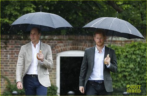 Dianas Sons Pay Homage At Concert by Princes William Harry Pay Tribute To Their Late