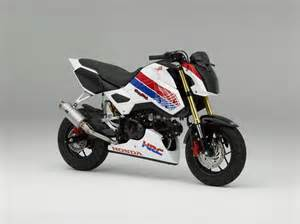 Honda Bikes Honda Grom Race Bike From Hrc