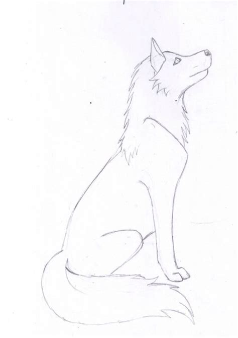 Simple Wolfis M simple wolf sketch wolf drawings wolf