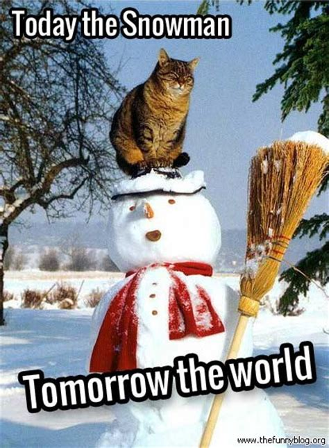 Funny Winter Memes - funny winter cat meme today snowman tomorrow world