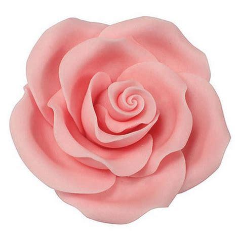 Bloom Box Light Pink Multicolor Preserved Flower Uk 10 X10 Cm pale pink sugar soft roses 63mm bangor cake and craft