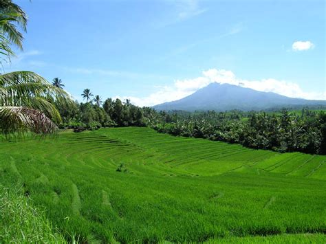 wallpaper alam sekitar bali indonesia travel information and free pictures