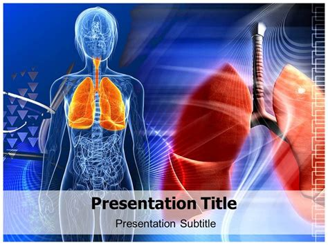powerpoint themes lungs human lungs diagram powerpoint templates ppt backgrounds