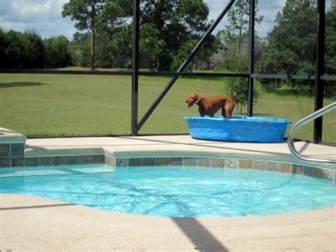 outside pool 187 slim pickings bronx banter