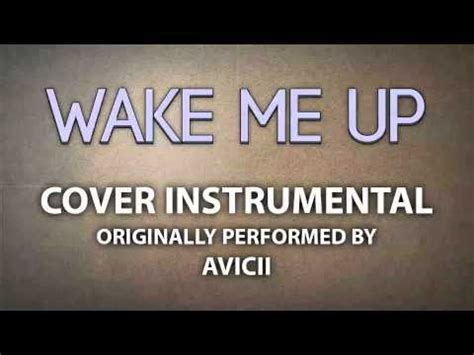 avicii karaoke wake me up cover instrumental in the style of avicii