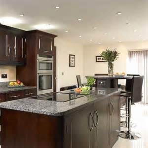 Kitchen Ideas With Dark Cabinets by Backsplash Idea For Dark Cabinets The Kitchen Design