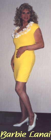 crossdress home barbie lanai s crossdressing home page