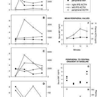 test al synacthen serum mif and cortisol levels during a synacthen