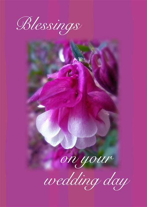 wedding blessings greeting card columbine blossom - Wedding Blessing Nature