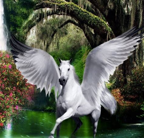 Lovely Pegasus 17 best images about pegasus on beautiful future and wallpapers