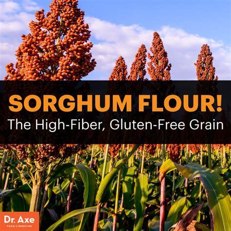 whole grains dr axe the high fiber gluten free ancient grain sorghum flour